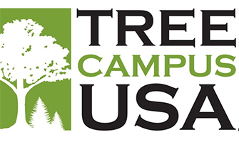 UMass Amherst Recognized as a Tree Campus USA